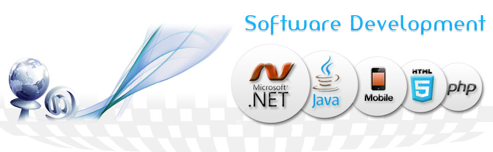 Software company Pune